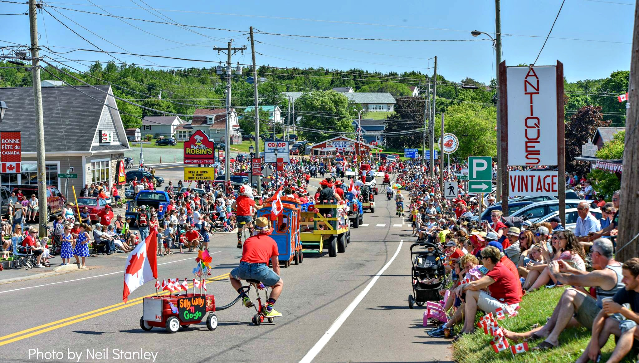 Canada Day Parade 2015 by Neil Stanley